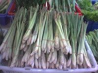 cymbopogon-citratus-lemon-grass-640px-38335.1428432070.200.200.jpg